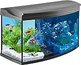 Tetra AquaArt Evolution Line LED Acuario 100 L - Set completo (incluso illuminazione a LED, interruttore luce diurna e notturna, filtro interno EasyCrystal e riscaldatore per acquari), antracite